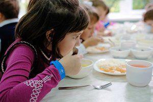 Стандарты бесплатного питания в школах предложили ввести в РФ