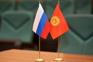 Киргизия заинтересована в российском опыте организации дистанционного обучения